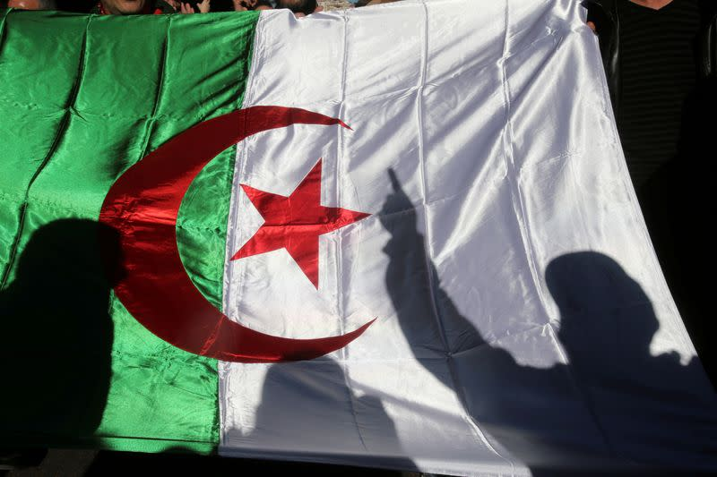 FILE PHOTO: A demonstrator's shadow is cast on a national flag during an anti-government rally in Algiers