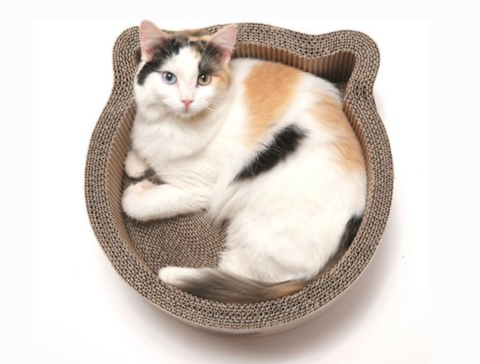 Cardboard Cat Bed Shaped Like a Cat