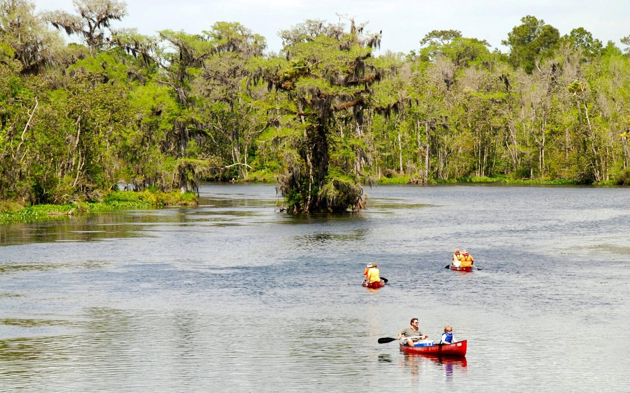 "<p>Naturally, the more time we spend in a national park, the more we like it. Which is why we love <a href=""https://www.nps.gov/ever/index.htm"" target=""_blank"">Everglades</a> so much, considering we camped here for nearly a week in the winter. Having plenty of time to explore allowed us to really dig into what makes this Florida park so special, from its great kayak options to hiking trails through sky-scraping pine forests and eerie wetlands. The wildlife here is also some of the most intense — it's the only place in the world where alligators and crocodiles coexist. And we saw plenty of both.</p>"