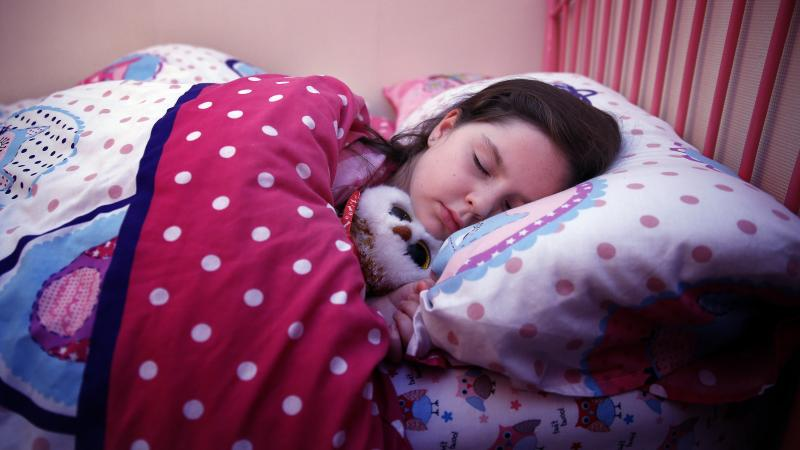 Scientists discover how sleep boosts the immune system
