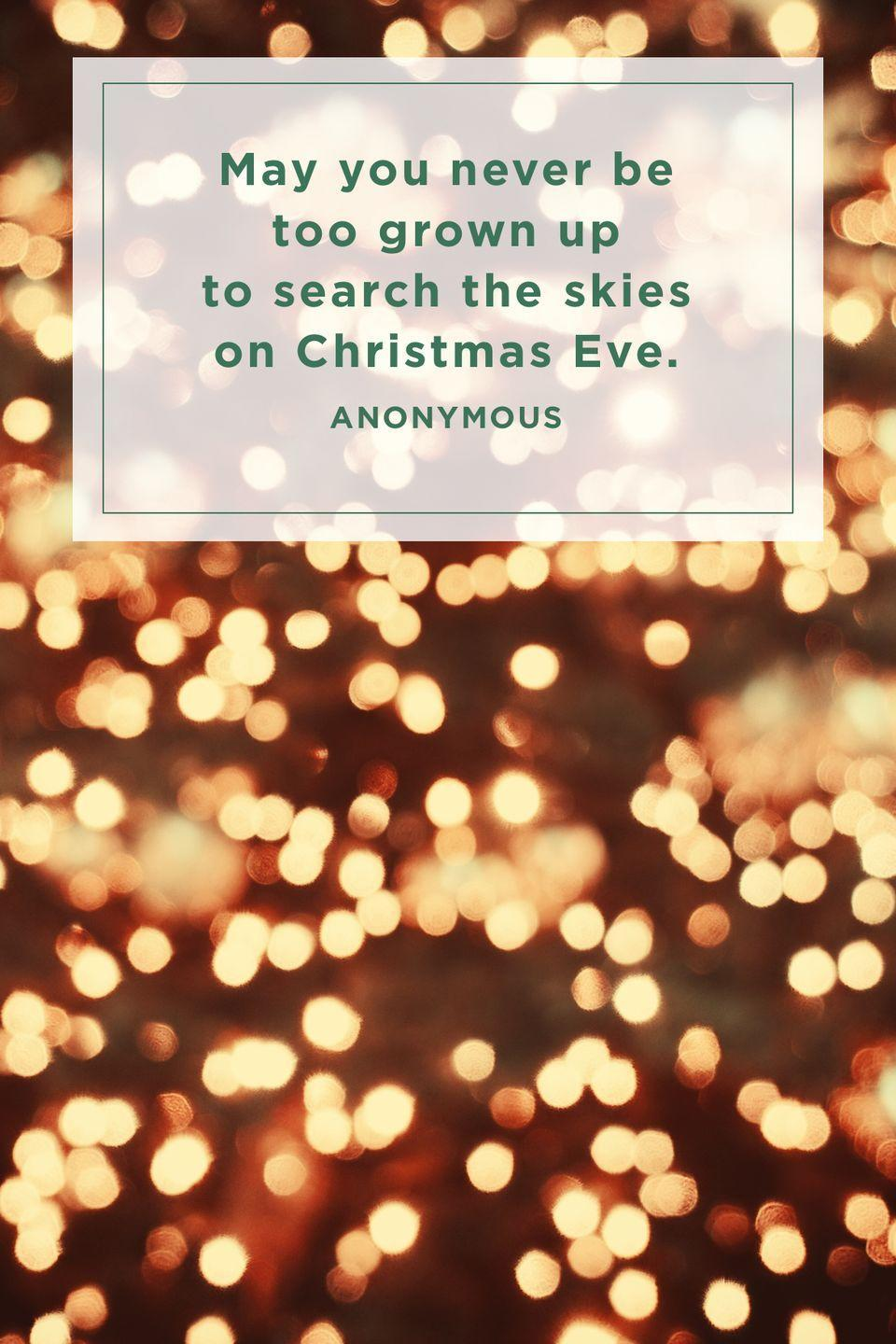 """<p>""""May you never be too grown up to search the skies on Christmas Eve.""""</p>"""