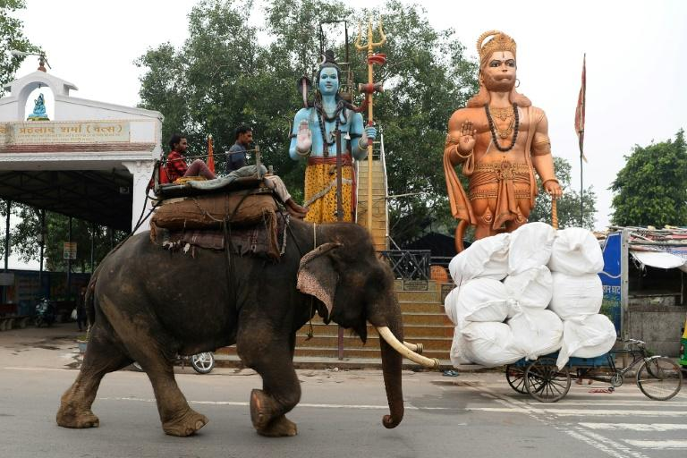 Fifty years ago the Indian capital housed more than 200 elephants