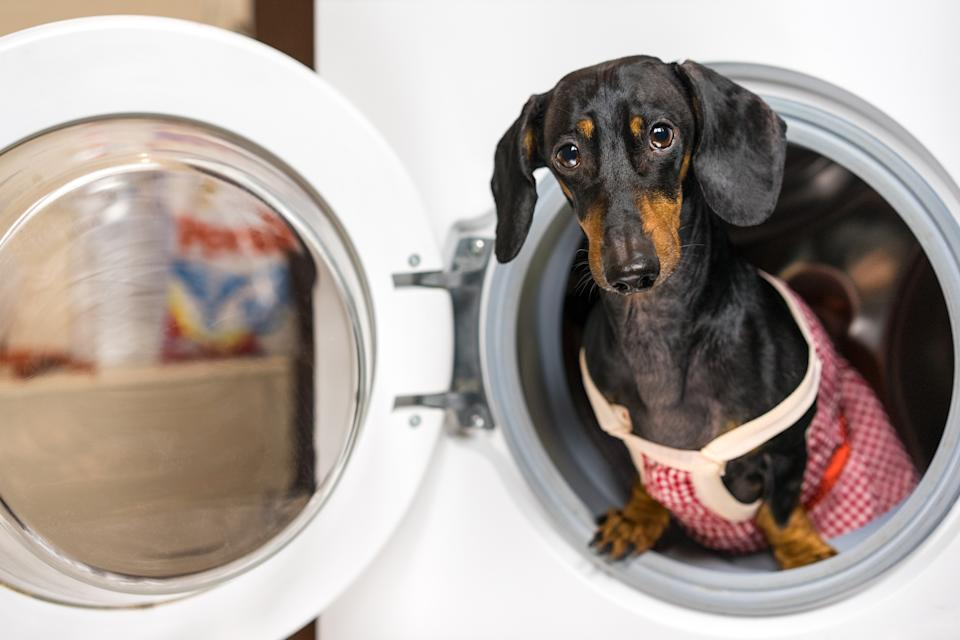 These non-toxic pet hair removers work like a charm in the washer or dryer. (Photo: Getty)