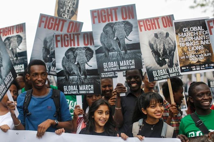 Demonstrators hold up placards as they march in support of protecting elephants, rhinos and lions and to raise awareness that they are endangered species, in downtown Nairobi, Kenya on 15 October 2016. (EPA)