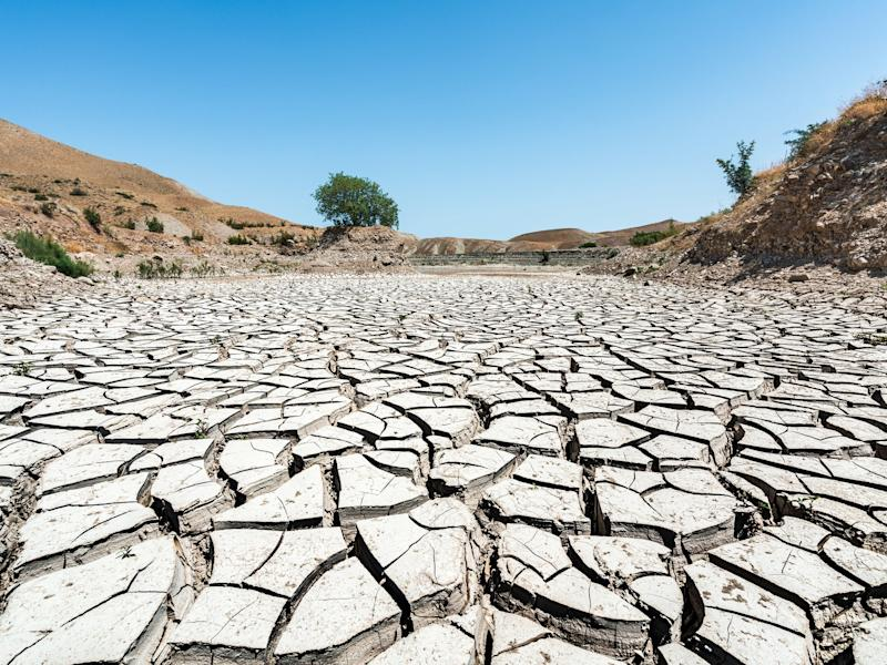 The climate crisis is exacerbating naturally occurring periods of aridity in the south west US and northern Mexico, scientists say: Getty