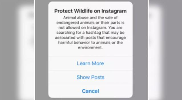 These warnings now come up on wildlife photos on Instagram. Source: Instagram
