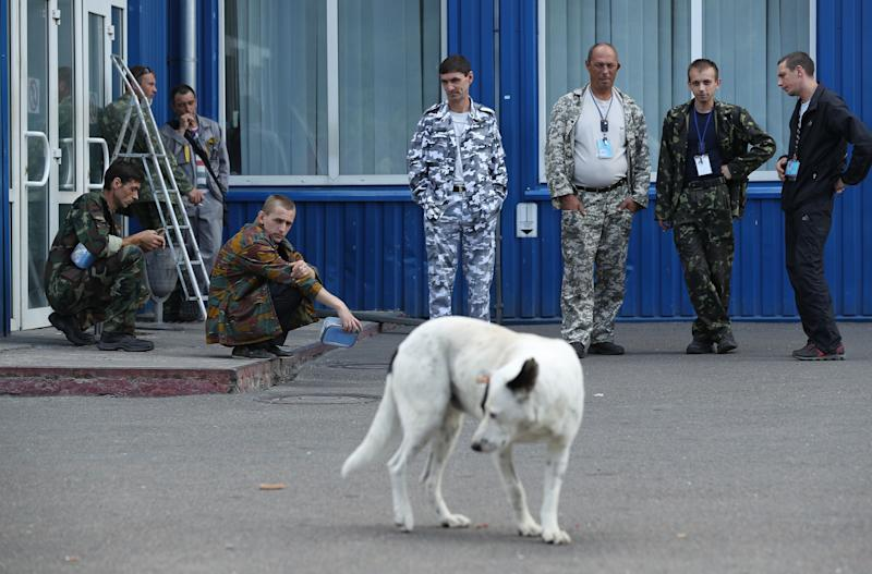Workers on a break watch a stray dog saunter by outside an administrative building inside the exclusion zone at the Chernobyl nuclear power plant on August 18, 2017.