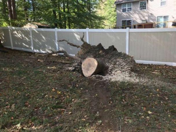 PHOTO: Remains of the tree that crashed through a family's home in Maryland. (Courtesy Jenn Stone)