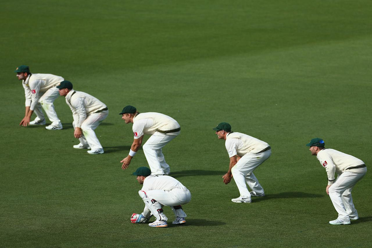 HOBART, AUSTRALIA - DECEMBER 18: A general view of the Australian slips cordon during day five of the First Test match between Australia and Sri Lanka at Blundstone Arena on December 18, 2012 in Hobart, Australia.  (Photo by Robert Cianflone/Getty Images)