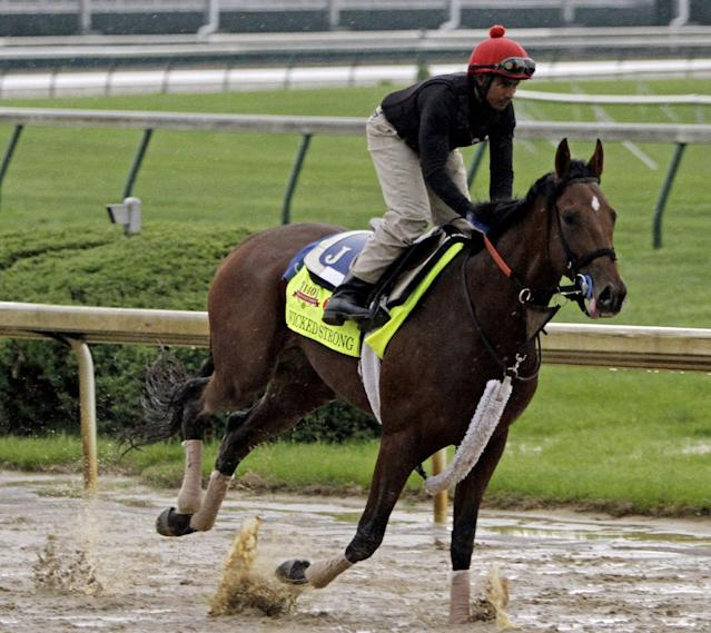 Exercise rider Kelvin Pahal takes Kentucky Derby hopeful Wicked Strong for a morning workout at Churchill Downs Monday, April 28, 2014, in Louisville, Ky. (AP Photo/Garry Jones)