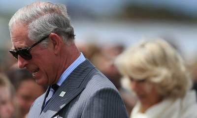 Charles And Camilla 'Attack Plan': NZ Man Held
