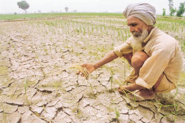 Opinion | Impending hazards: The case of farm loan waivers