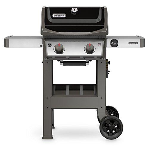 Weber Spirit II E-210 2-Burner Liquid Propane Grill (Amazon / Amazon)
