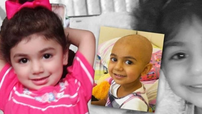 Global Hunt for Rare Blood Type To Save 2-Year-Old Still On, Donors Should Be 100% Pakistani, Indian or Iranian