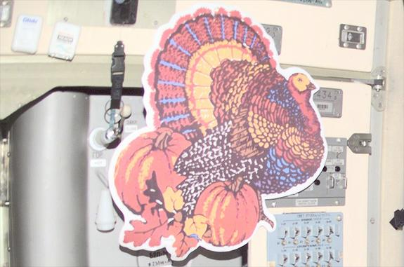 A Brief History of Thanksgiving Turkey in Space
