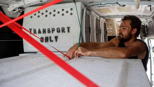 PHOTO: Evan Shepard, the lead canine behavior assessor for McKamey, works on securing kennels in a transport van at McKamey Animal Center on Sept. 12, 2018 in Chattanooga, Tenn. (C.B. Schmelter/Chattanooga Times Free Press via AP)