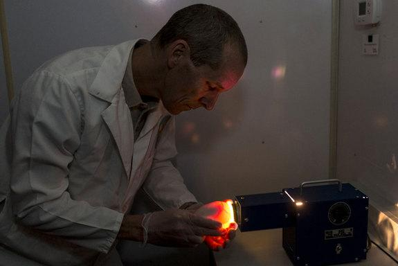 Ron Webb, a senior condor keeper at the San Diego Zoo Safari Park, holds a California condor egg up to a bright, warm light to monitor the development of the chick within in a process called candling.