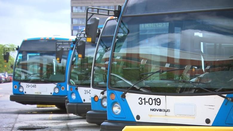 STM bus service slowly returning to normal after morning of delays