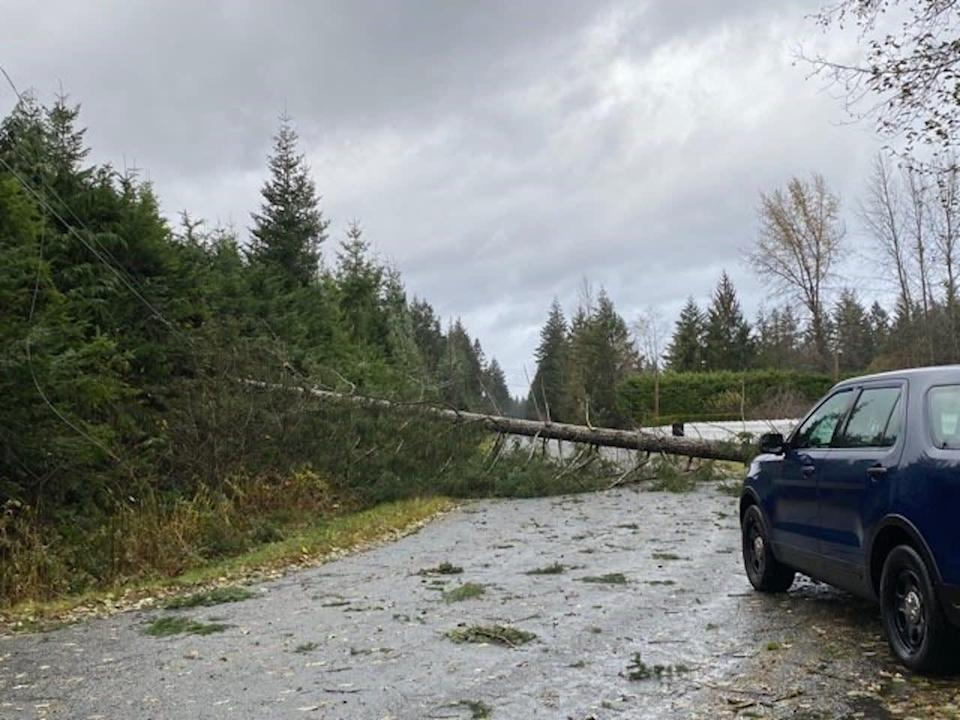 Power restored to most B.C. customers after damaging wind storm