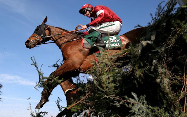 Tiger Roll - Action Images via Reuters