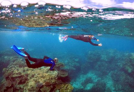 FILE PHOTO: Tourists snorkel in an area called the 'Coral Gardens' at Lady Elliot Island, located north-east from the town of Bundaberg in Queensland, Australia, June 11, 2015. REUTERS/David Gray/File Photo