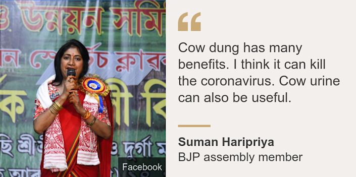 """Cow dung has many benefits. I think it can kill the coronavirus. Cow urine can also be useful."", Source: Suman Haripriya, Source description: BJP assembly member, Image: BJP MLA Suman Haripriya"