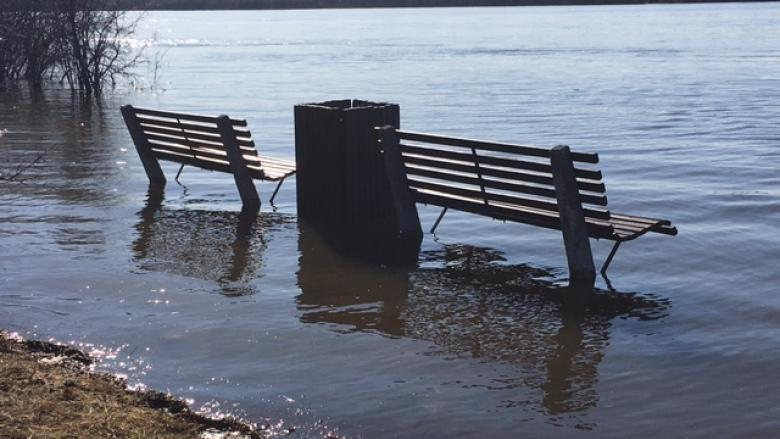 Rising Ottawa River increases flood risk in Britannia, Cumberland