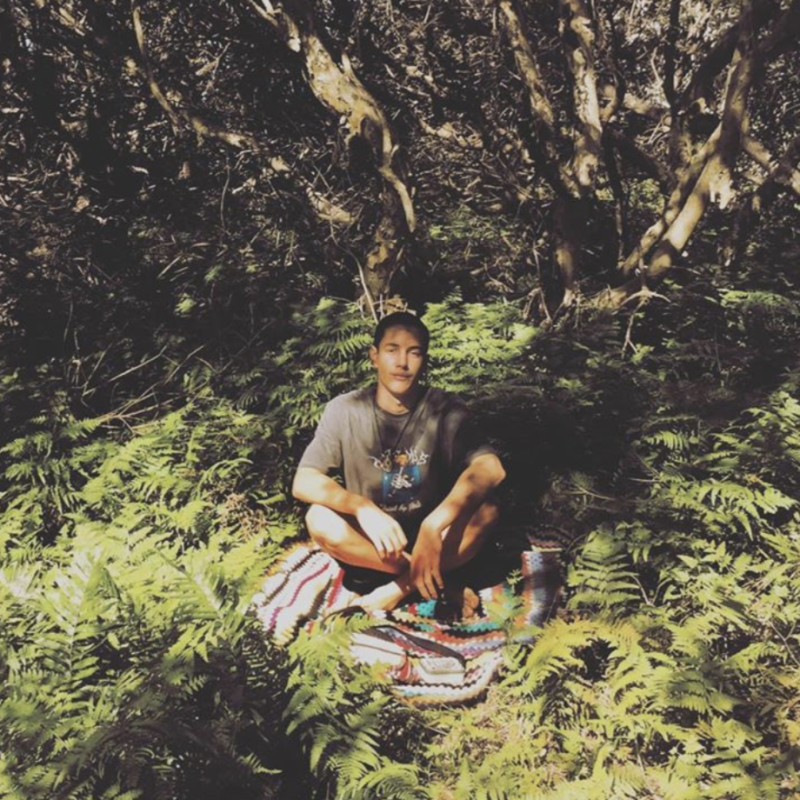 Mani Hart-Deville is pictured sitting in a rainforest.