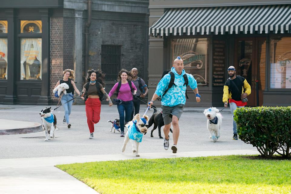 """Contestants Donna Modafferi and her pup Charlie, far left, Mitra Najibeh Yosri and Bozley, Lucy Riles and Duchess, Daniel Reese and Allister, Kioni """"Kentucky"""" Russell Gallahue and Derby, and Josh White and Snow race toward their goal in Amazon's new global competition, """"The Pack."""""""