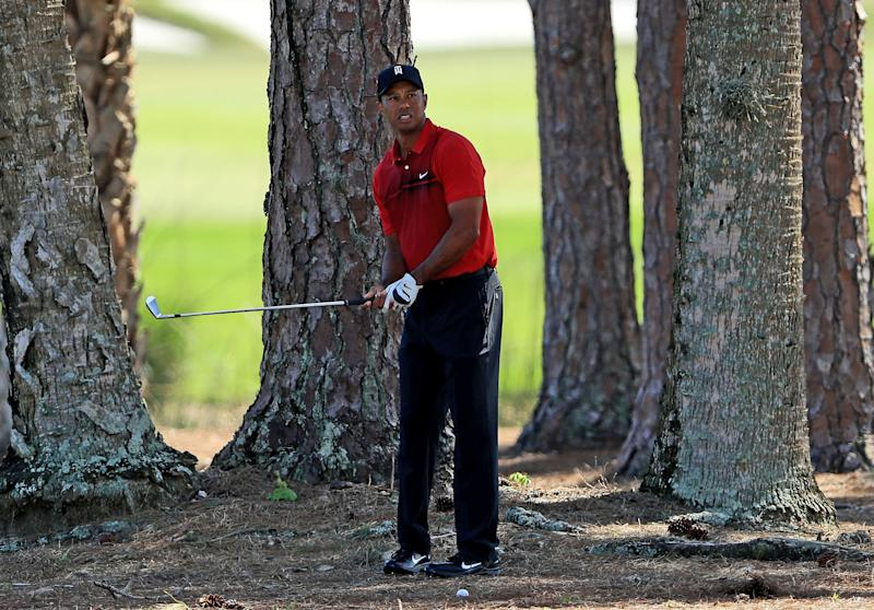 Tiger found some awkward places at PGA National, but mostly his driving and ball-striking were far improved from his first two starts.