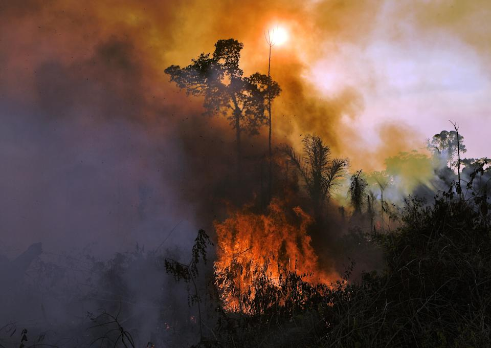 Smoke and flames rise from an illegally lit fire in Amazon rainforest reserve, south of Novo Progresso in Para state, Brazil, on August 15, 2020. (Photo by CARL DE SOUZA / AFP) (Photo by CARL DE SOUZA/AFP via Getty Images)