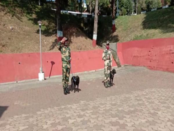Indian dog breeds trained for patrolling activities (Photo/ ANI).