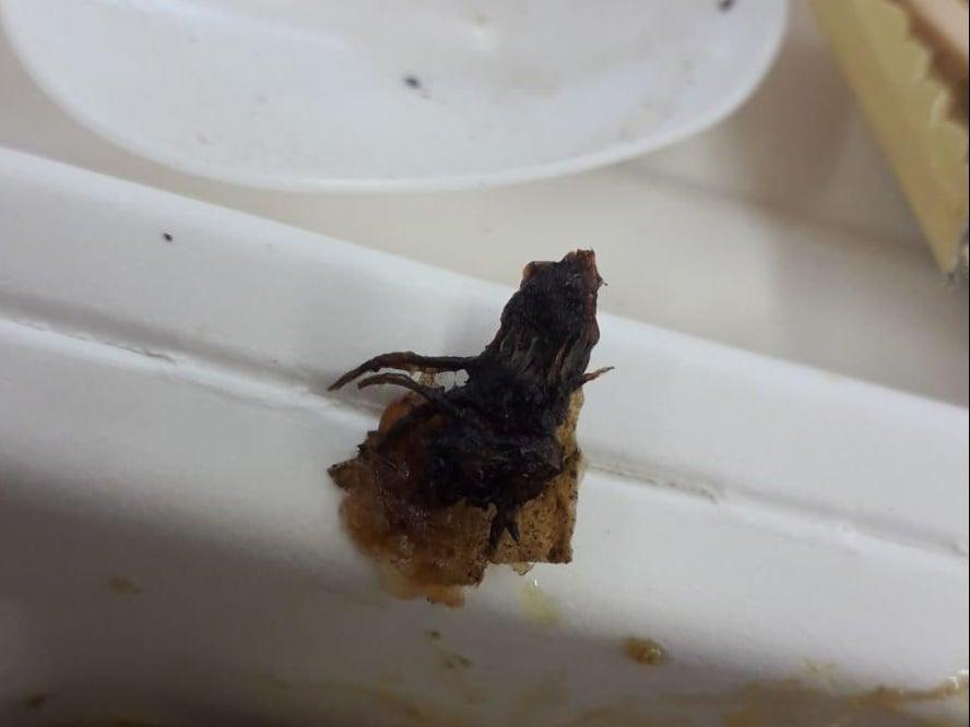 Asylum seekers at the Penally camp in Pembrokeshire, Wales, said they found what they believe to be a partially fried insect in a meal served on-site. The Home Office has said workers at the camp determined the object to be a vegetable. The incident comes as asylum seekers continue to sound the alarm about the food and conditions at the camp.