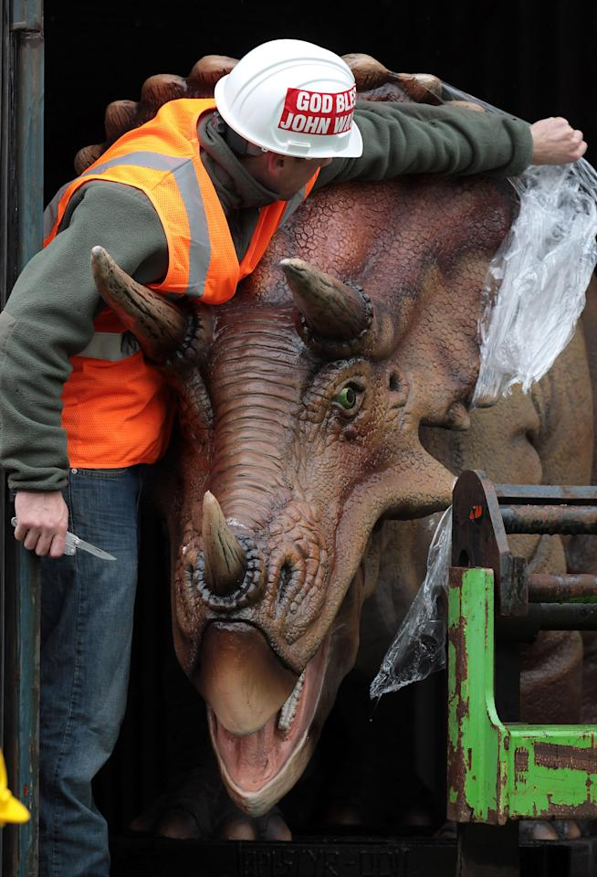A Triceratops dinosaur arrives at Bristol Zoo Gardens on May 14, 2012 in Bristol, England. The twelve dinosaurs - which form part of the zoo's summer exhibition DinoZoo which opens later this month - arrived this morning after being transported in crates from Texas, USA.  (Photo by Matt Cardy/Getty Images)