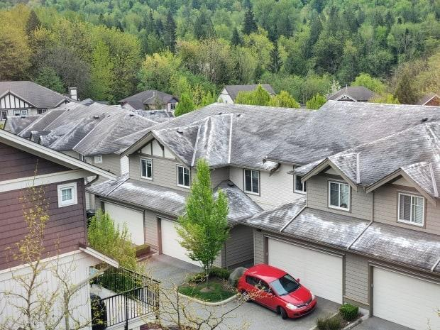 Powdered laundry detergent is shown on the roofs of a 140-unit townhome complex on the side of Sumas Mountain in Abbotsford, B.C., earlier this week.