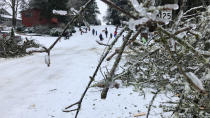 People play outdoors in Lake Oswego, Ore., Saturday, Feb. 13, 2021. The tree fell during an ice and snowstorm that left hundreds of thousands of people without power and disrupted travel across the Pacific Northwest region. (AP Photo/Gillian Flaccus)