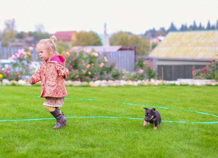 <body><p>Small kids love running, jumping, and digging outdoors, which is all fun and games until the lawn starts looking ragged and patchy. For those with dogs, the damage can be even more severe, as pet waste is toxic to most grass varieties. Instead of struggling to grow a lawn under such tough conditions, consider synthetic grass, which will always look lush and provide a soft and cushy surface for tiny toes.</p></body>