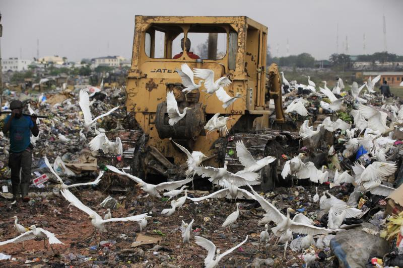 In this photo taken Friday, Jan, 24. 2014, a scavenger in Lagos, Nigeria sorts out iron and plastic to sell while a bulldozer clears the garbage and birds surround it n the Olusosun dump site the city's largest dump. With a population of more than 20 million, garbage piles up on streets, outside homes and along the waterways and lagoons, creating eyesores and putrid smells. The booming city also has major electricity shortages and many residents rely on diesel generators that cloud the air with black exhaust. Nigeria's most populous city is turning these problems into an advantage by starting a program to convert waste into methane gas to generate electricity. A pilot program at a local market has already shown success on a smaller scale. Lagos' waste management program is also organizing recycling to clean up the country's biggest city. (AP Photo/ Sunday Alamba)