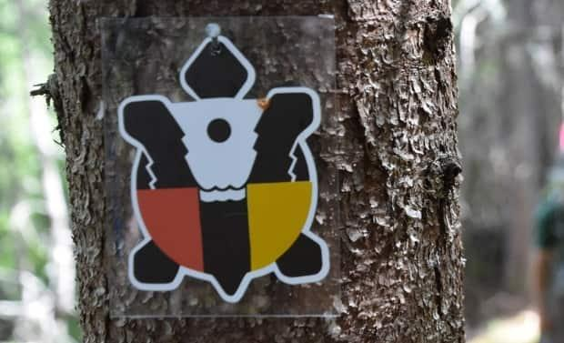 Mi'gmaq interdisciplinary artist Phyllis Grant said she originally sold the design to Pabineau First Nations but it was eventually used as a logo for the Mi'gmaq Trail. (Facebook - image credit)