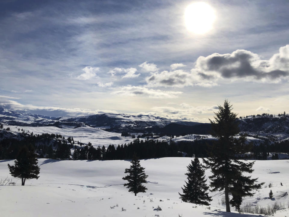 This Feb. 17, 2020 photo shows Yellowstone National Park's Lamar Valley near Mammoth, Wyo. On Tuesday, March 24, 2020 the National Park Service announced that Yellowstone and Grand Teton National Parks would be closed until further notice, and no visitor access will be permitted to either park. (AP Photo/Matthew Brown)