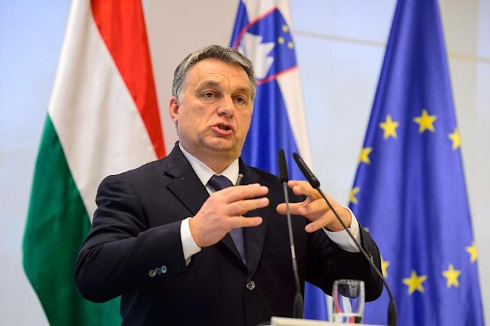 Hungarian Prime Minister Viktor Orban speaks during a press conference after meeting with his Slovenian counterpart in Brdo, Slovenia, on January 22, 2016 (AFP Photo/Jure Makovec)
