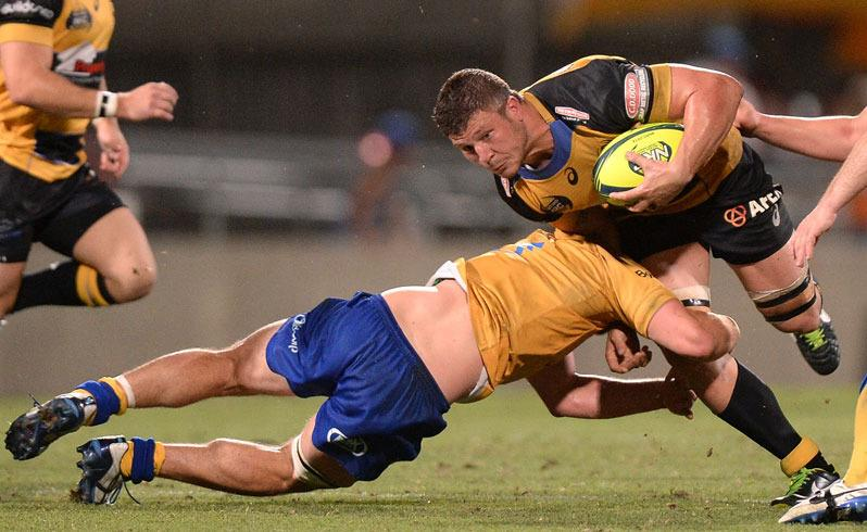 WA rugby thriving: Force chief
