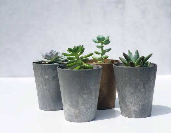 """<p><strong>The Nice Plant</strong></p><p>theniceplant.com</p><p><strong>$59.99</strong></p><p><a href=""""https://theniceplant.com/products/better-than-a-threesome-box"""" rel=""""nofollow noopener"""" target=""""_blank"""" data-ylk=""""slk:Shop Now"""" class=""""link rapid-noclick-resp"""">Shop Now</a></p>"""