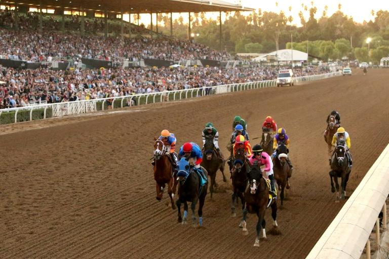 Horses Die In 3 Days At Notorious Santa Anita Racetrack