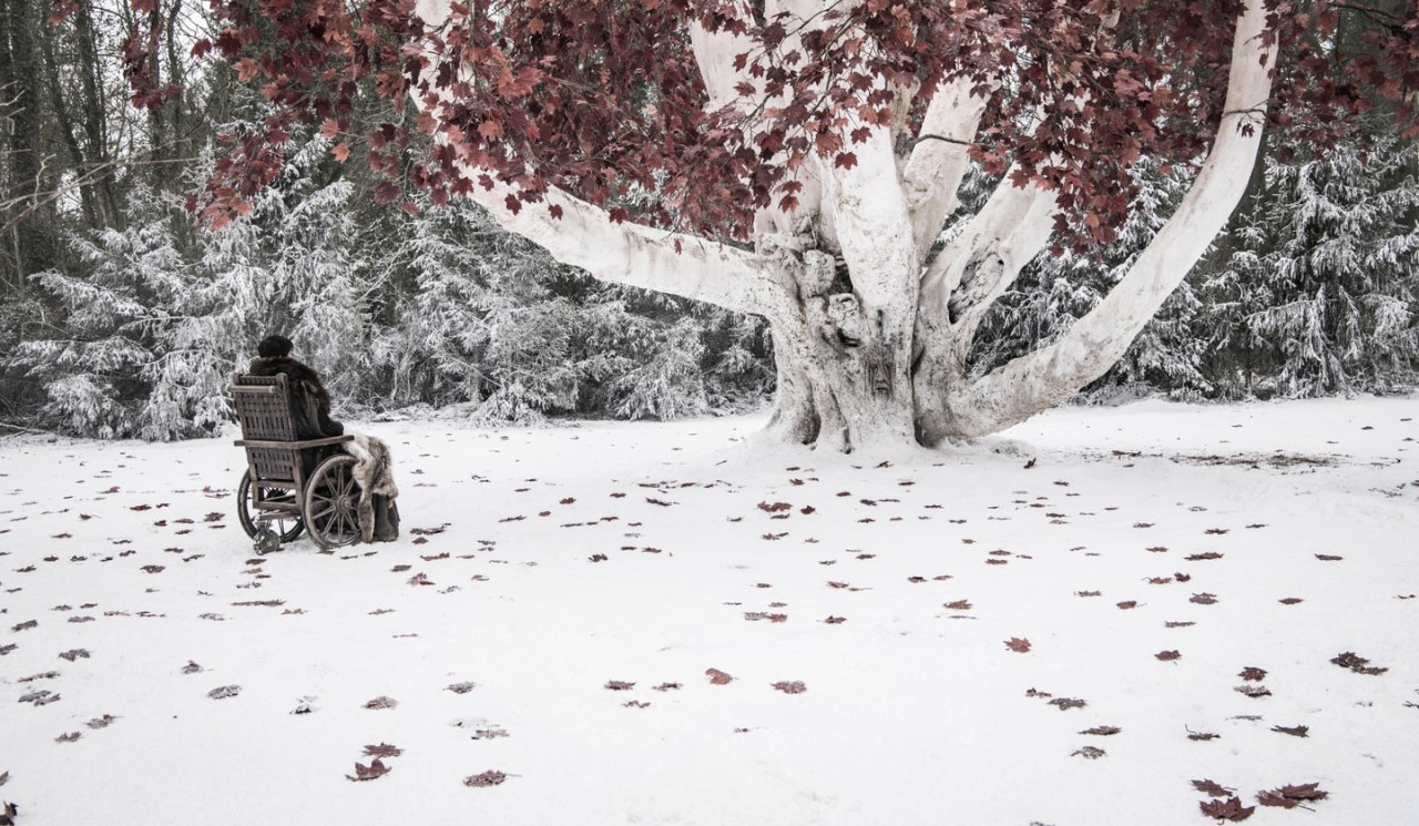<p>Bran Stark contemplates the battle ahead in the goswood.</p>