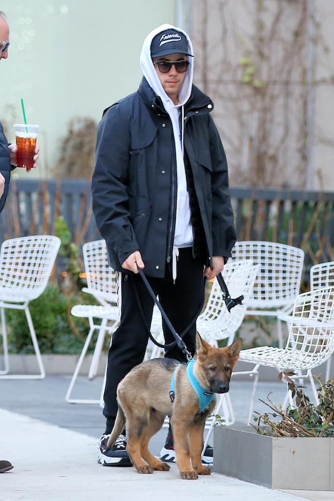 Singer Nick Jonas walks his new German Shepherd dog Gino Jonas in New York City Pictured: Nick Jonas Ref: SPL5132520 301119 NON-EXCLUSIVE Picture by: Christopher Peterson / SplashNews.com Splash News and Pictures Los Angeles: 310-821-2666 New York: 212-619-2666 London: +44 (0)20 7644 7656 Berlin: +49 175 3764 166 photodesk@splashnews.com World Rights