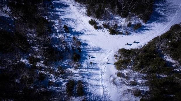 The club offers 13 kilometres of trails for classic and skate skiing, and snowshoeing, seven days a week.  (Shane Hennessey/CBC - image credit)