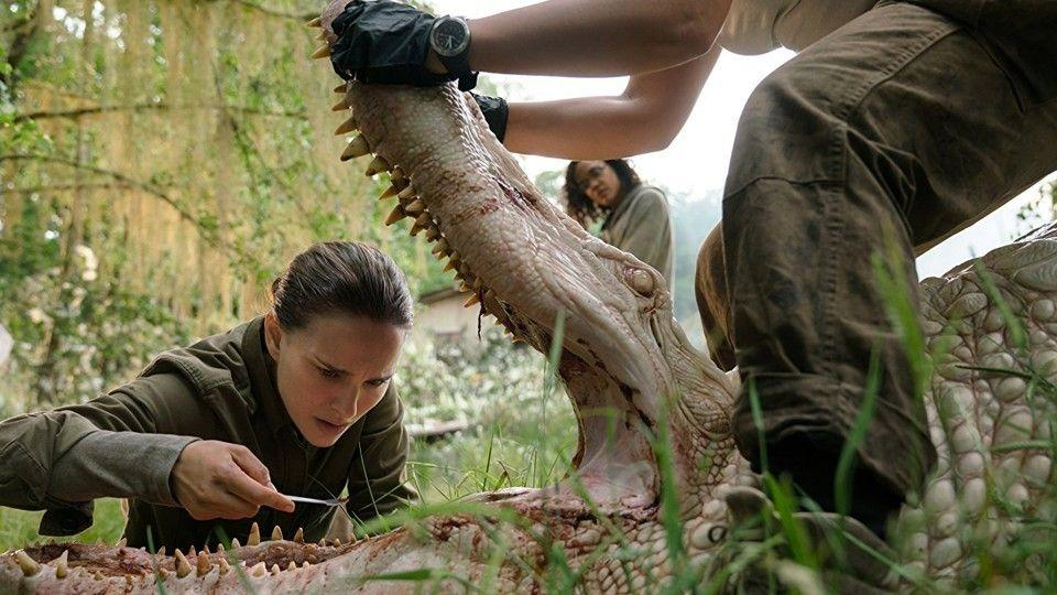 <p>Natalie Portman teams up with a squad of women who venture into a territory known as The Shimmer, a mysterious area surrounding a meteor landing where animals have evolved into unrecognizable creatures.</p>