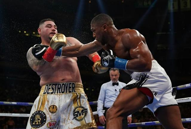 USA's Andy Ruiz will face England's Anthony Joshua in Saudi Arabia (AFP Photo/TIMOTHY A. CLARY)