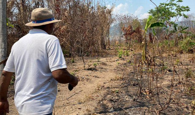 Amazon rainforest: Farmers are losing everything to deforestation fires as experts warn it is reaching tipping point